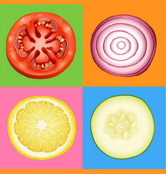 Four slices of different vegetables vector