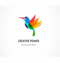 Hummingbird colorful icon and logo vector