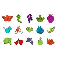 berries icon set color outline style vector image
