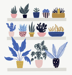 botanic collection with flower pots vector image