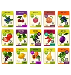 Fruit cards with price for farm market vector