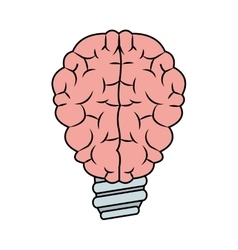 Isolated brain and bulb design vector