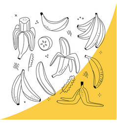 Set line-art bananas overripe banana vector