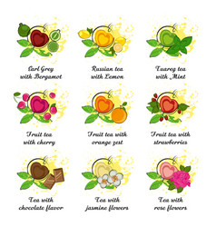 Set of leaf tea with different flavor vector