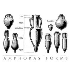amphora forms set vector image