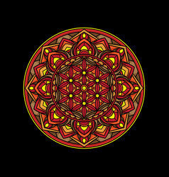 beautiful simple mandala design vector image