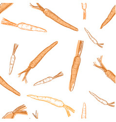hand drawn carrot set seamless pattern vector image