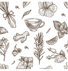 Herbs sketch seamless pattern background vector