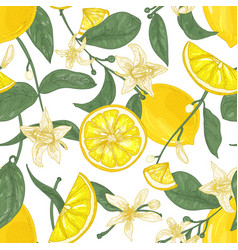 seamless pattern with fresh juicy lemons whole vector image