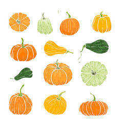 set decorative orange and green pumpkins hand vector image