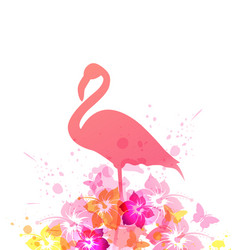 Summer background with pink flamingo vector