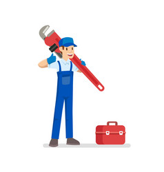 young plumber with his tool vector image
