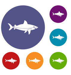 shark fish icons set vector image vector image