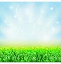 Spring green grass vector image vector image