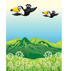 Two birds flying along the mountains vector image