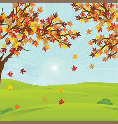 Autumn landscape with fall leaves on the branches vector