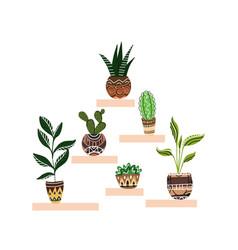 cartoon home flowers in pots vector image