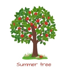 Green apple tree summer tree vector
