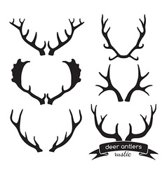 Hand drawn vintage antlers Rustic decorative vector