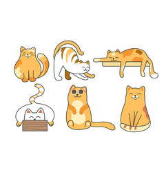 set cute colorful cats in different poses vector image
