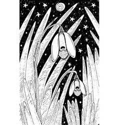 snow drop - flower black and white vector image