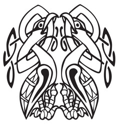 celtic design with knotted lines of two birds vector image
