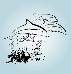Ink sketch of dolphins vector