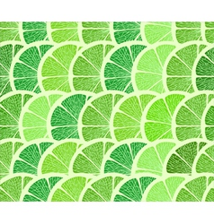 Lime background vector image
