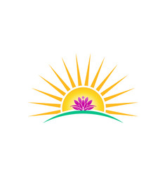 lotus plant in sunrise logo image lotus vector image