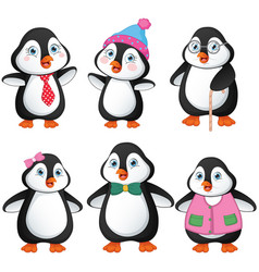 Of penguin family vector
