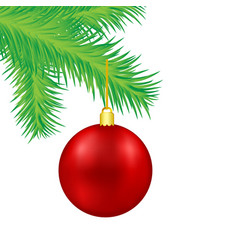 red christmas decoration ball on green fir tree vector image