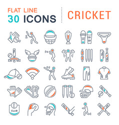 set line icons cricket vector image