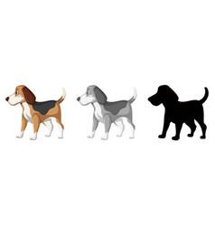 set of beagle dog character vector image