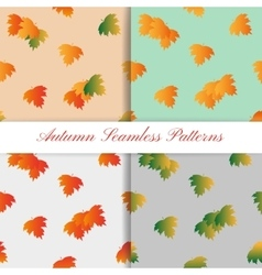 Set of Autumn Seamless Pattern with colorful vector image vector image