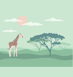 banner giraffe savannah vector image