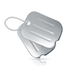 Military dog tags vector image