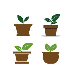 Plant Pot Logo Design Template Vector