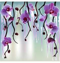 background with orchids vector image vector image