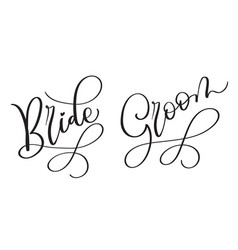 Bride groom hand drawn vintage text on vector