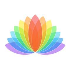 Colorful lotus flower icon logo on white vector