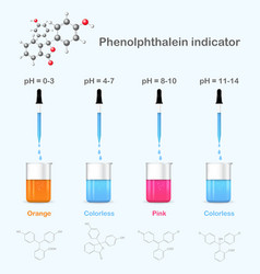 Phenolphthalein in solutions with different pH vector image