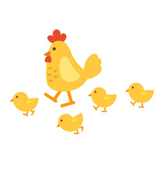isolated chicken on white background vector image