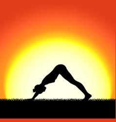 yoga mukhaasana pose black silhouette on sunset vector image
