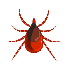mite or tick dangerous parasite colorful cartoon vector image vector image