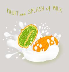 On theme falling kiwano at splash sugary cow milk vector