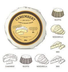round cheese mockup with camembert label vector image
