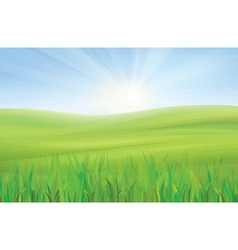 sky grass vector image