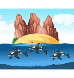 Three dolphines swimming underwater vector image