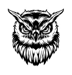 vintage serious owl head concept vector image