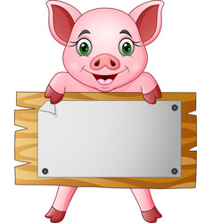 cartoon little pig holding blank board vector image